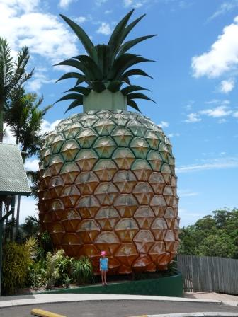 """The Big Pine Apple"" at Woombye"